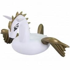 Comfortpool Pegasus